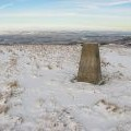 Summit and triangulation pillar, Steele's Knowe